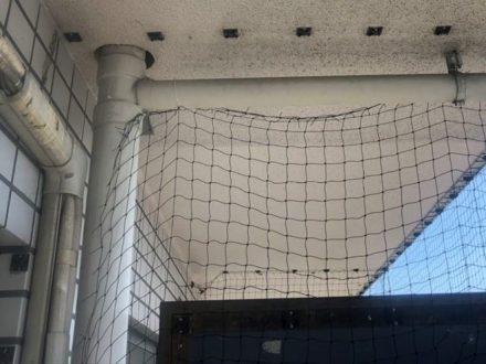 池田市・マンション(個人宅)の防鳩ネット補修の事例 の処理前写真(2)