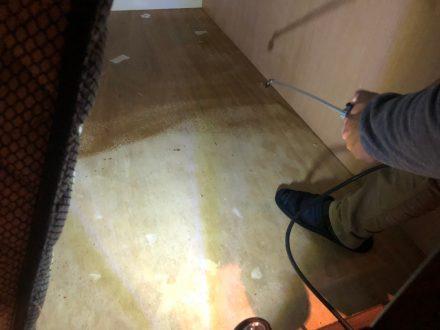 京都市上京区・宿泊施設の南京虫(トコジラミ)駆除の事例の処理前写真(拡大)