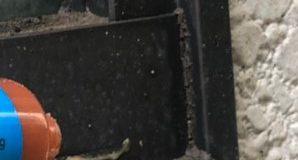 京都市下京区・個人宅のゴキブリ駆除の事例の駆除処理後