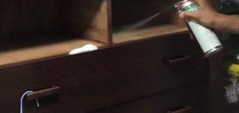 京都市山科区・アパート(個人宅)の南京虫(トコジラミ)駆除の事例の写真