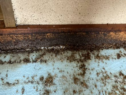 大阪市東成区・個人宅の南京虫(トコジラミ)駆除の事例の処理後写真(2)