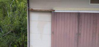 アシナガバチ駆除 池田市 個人宅 雨戸レールの写真