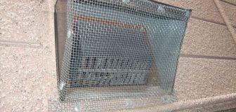 京都市西京区・個人宅のコウモリ駆除と侵入口封鎖工事の事例 の写真