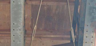 茨木市・工場のスズメバチ駆除の事例 の写真
