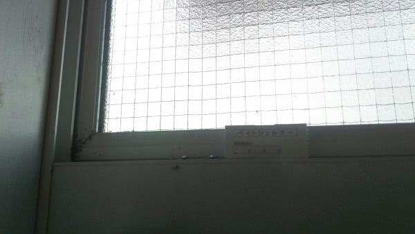アリ駆除 茨木市 個人宅 家の中画像