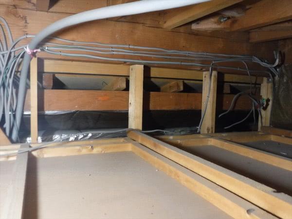 イタチの糞清掃&消毒作業 伊丹市 個人宅 屋根裏画像