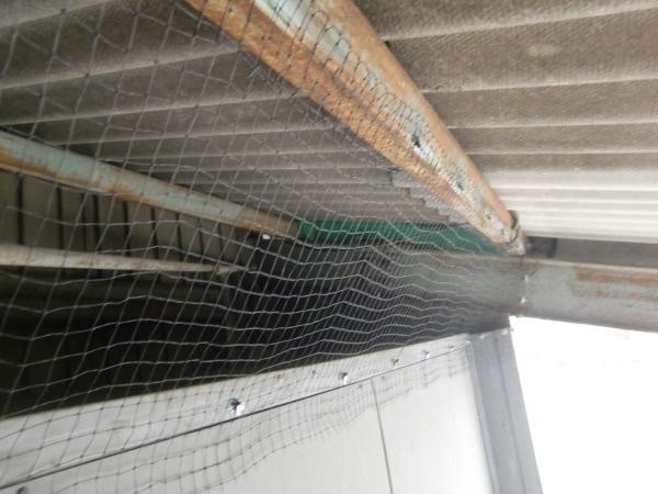 防鳩施工 尼崎市 工場 シャッター上画像