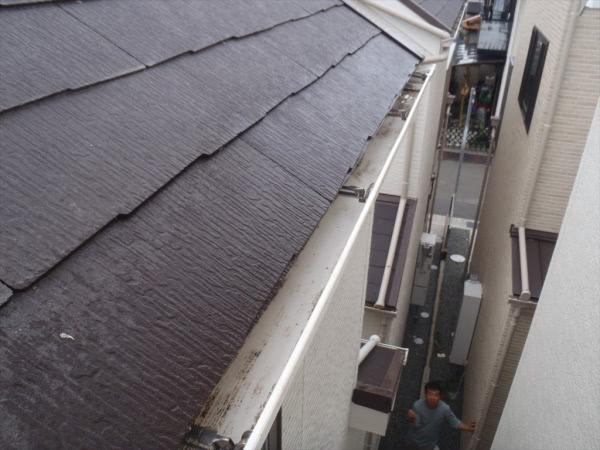 防鳩施工&清掃消毒 三田市 個人宅 屋根画像