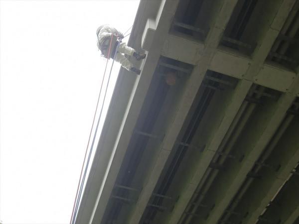スズメバチの巣撤去 京都 某公共施設 橋梁桁下画像