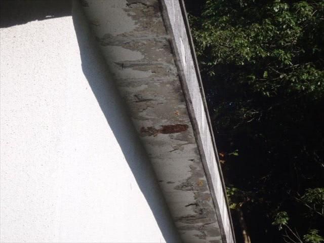 スズメバチ駆除 神戸市北区 某ホテル 建物の軒下画像