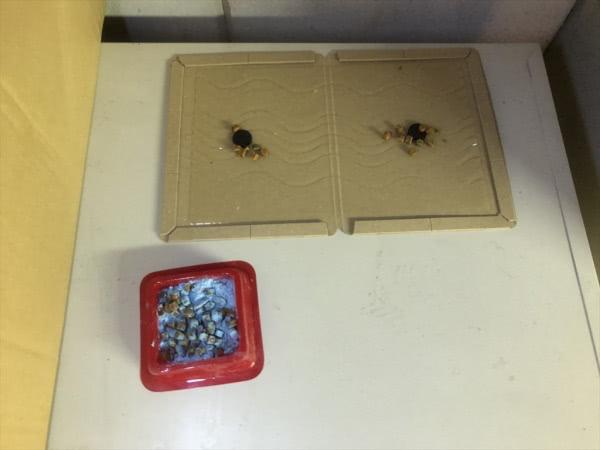 ネズミ駆除 尼崎市 会社 倉庫画像