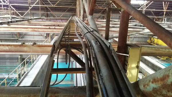 カラスの巣撤去+消毒除菌 門真市 工場内画像