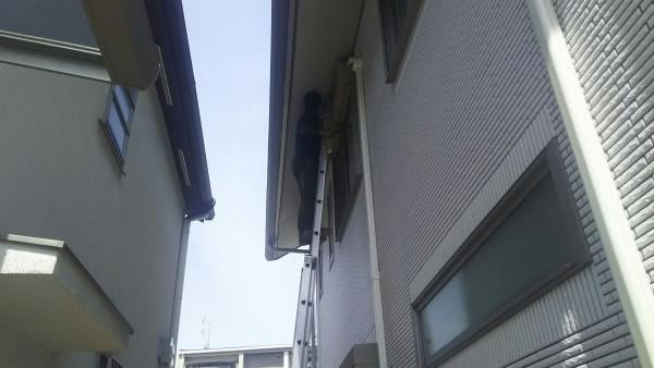 ムクドリの巣撤去 大阪市此花区 個人宅 シャッターボックス上画像