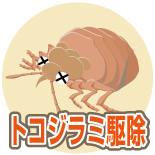 トコジラミ・南京虫の駆除